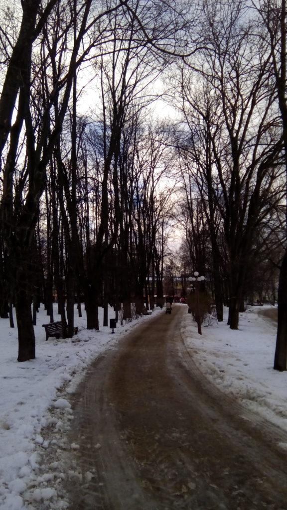 Небольшая улочка с деревьями, дальше рынок и .... современный город Дмитров!