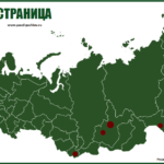 Открываю новый раздел на сайте «Зеленая страница» — в защиту лесов России от вырубок!
