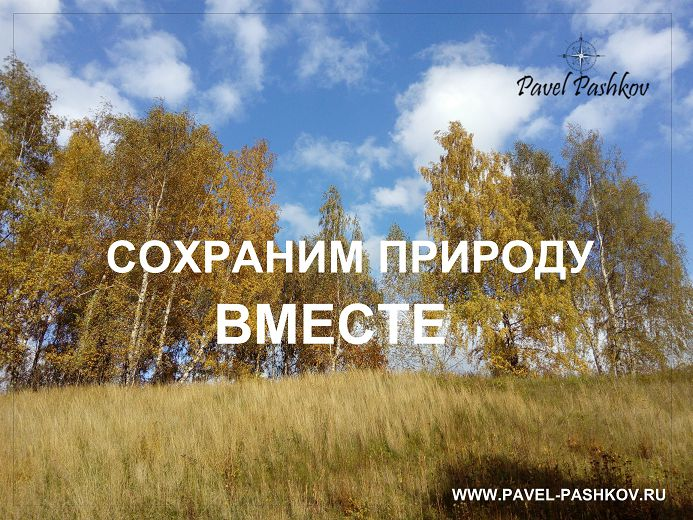 Проведем мониторинг лесных хозяйств Московской области
