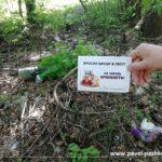 Проводим мониторинг лесов Московской области: размещение баннеров и уборка мусора!