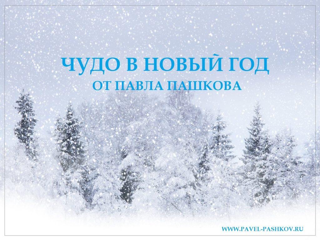 Новогоднее чудо от Павла Пашкова