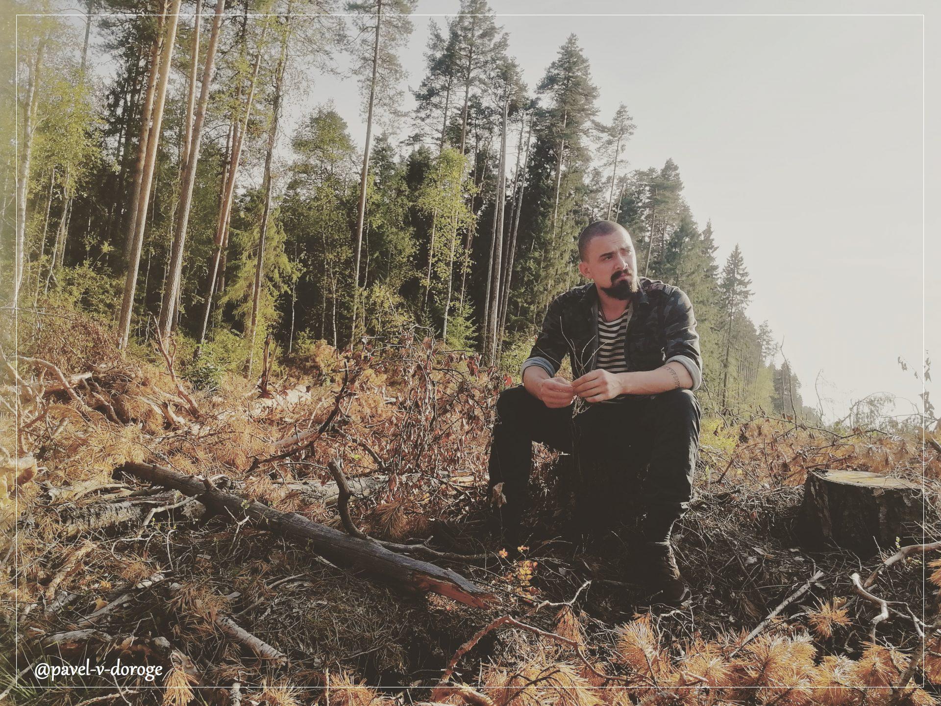 Общественая приемная: принимаем обращения по лесным проблемам!