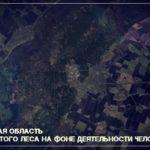 Здесь нет лесов и умирает последняя природа: новости из экспедиции!