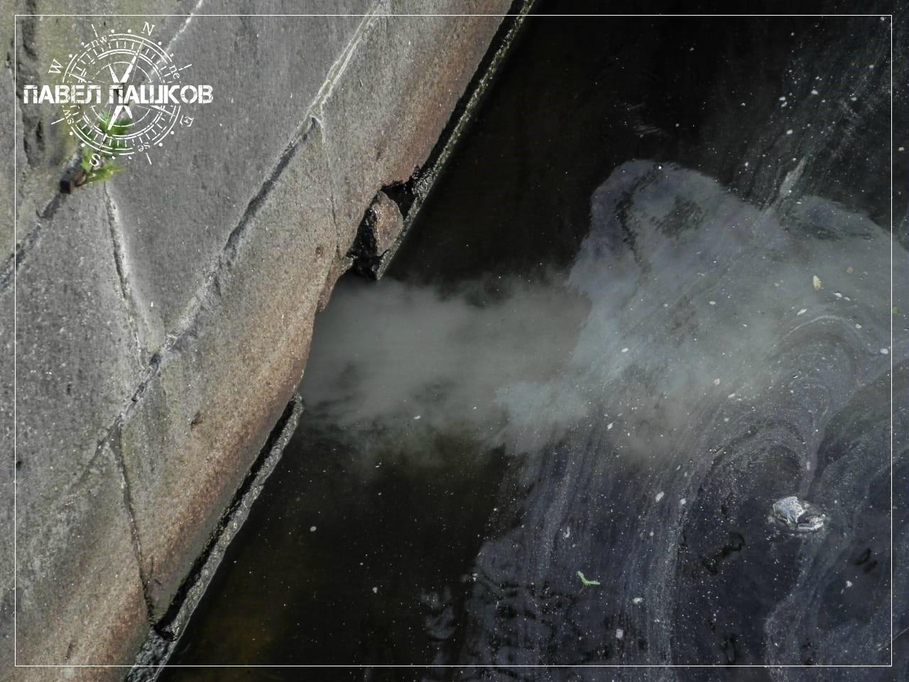 Загрязнение водных горизонтов Ленинградской области: «Черный Финский залив»