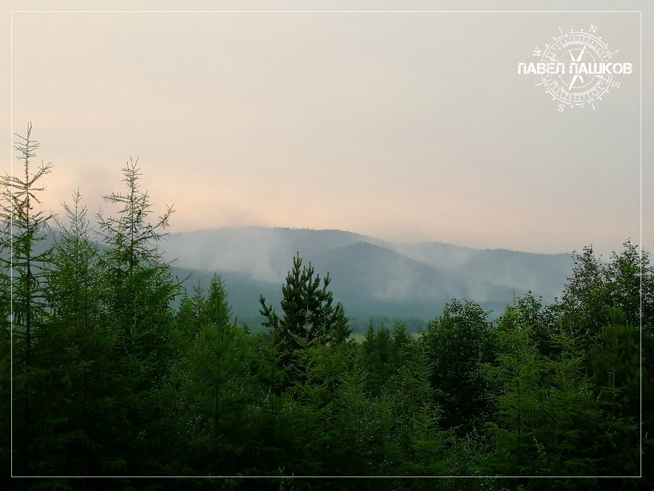 Почему не тушат леса?