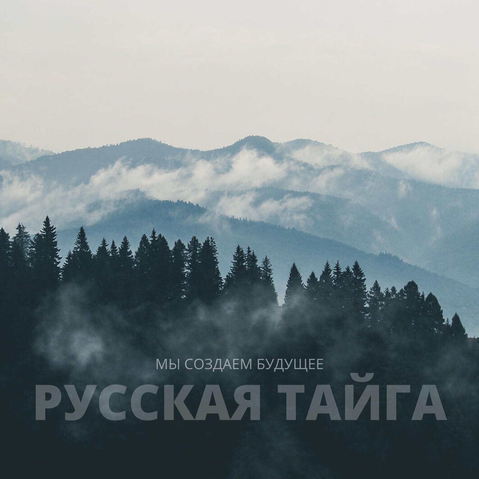 Проект «Русская Тайга» расширяется! Мы делаем новый шаг в защиту лесов России!