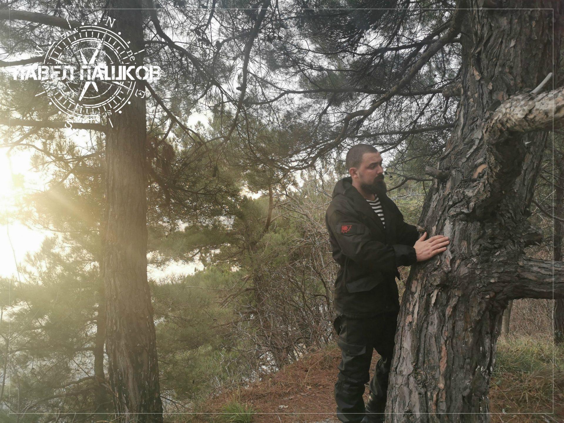 Лес - это не только древесина (заметка из экспедиции)