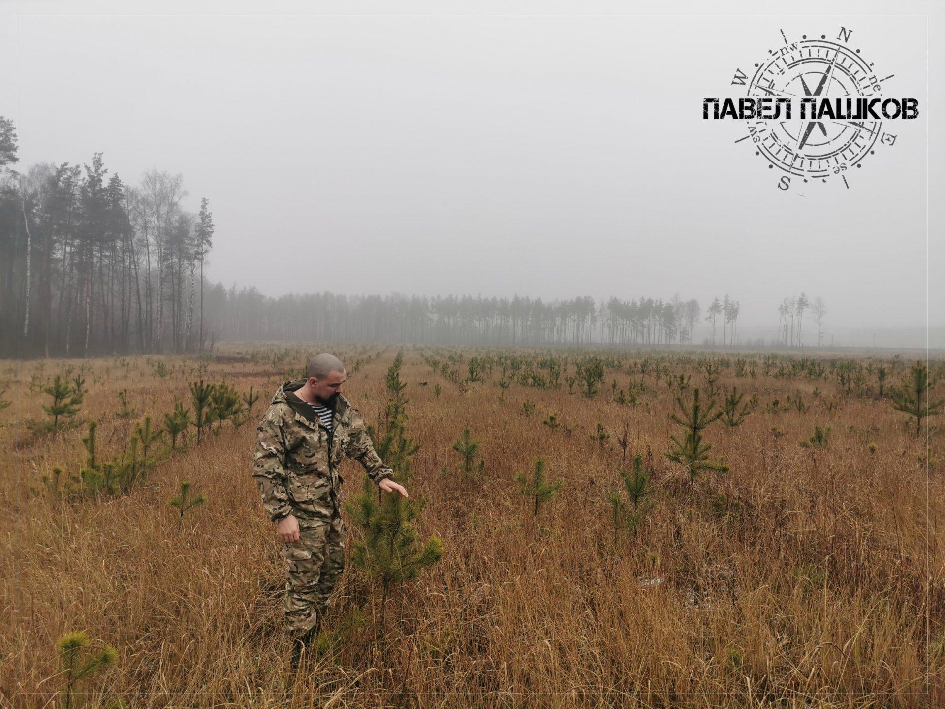 Долой пораженческие настроения в защите Русской Тайги!