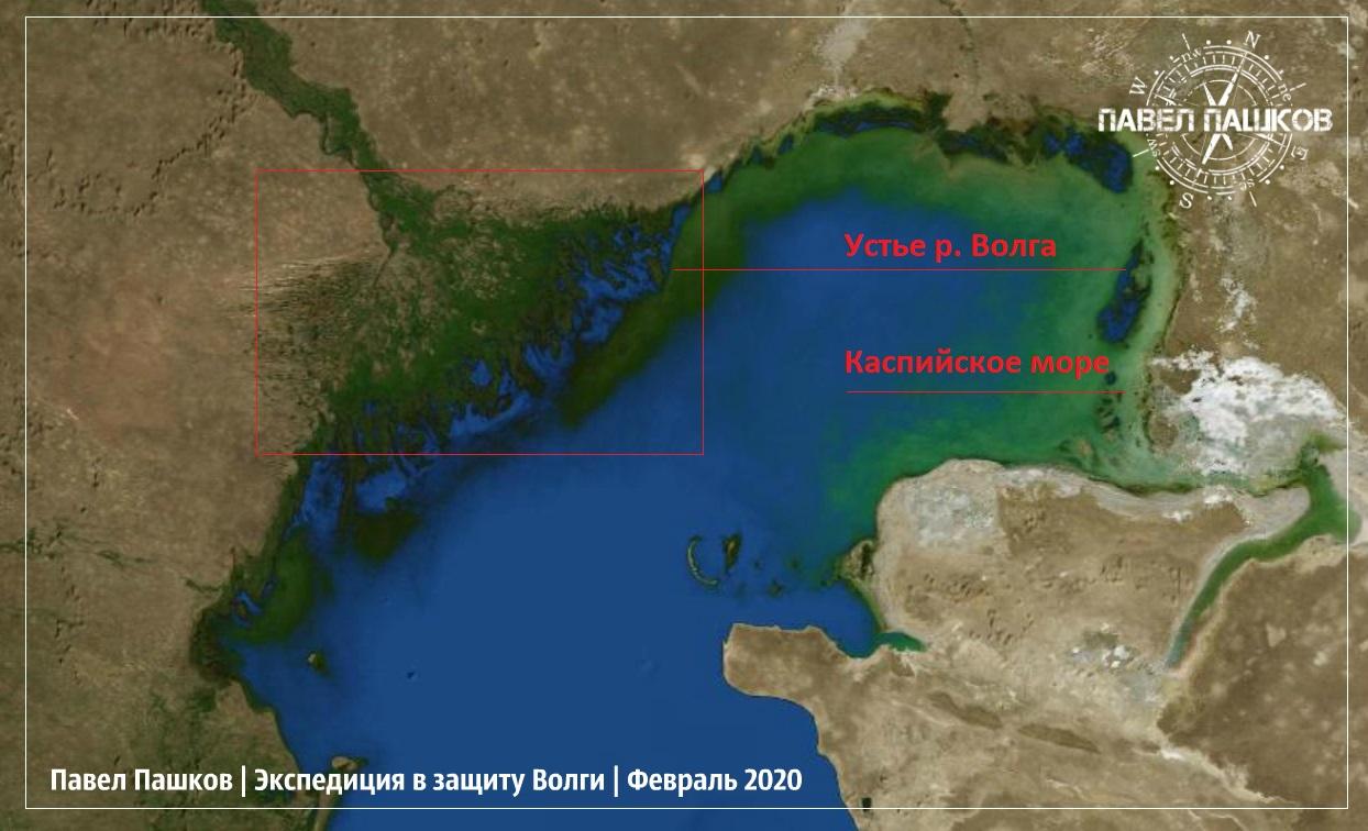 Сохранить тайгу - сохранить реки нашей страны (материал из экспедиции)