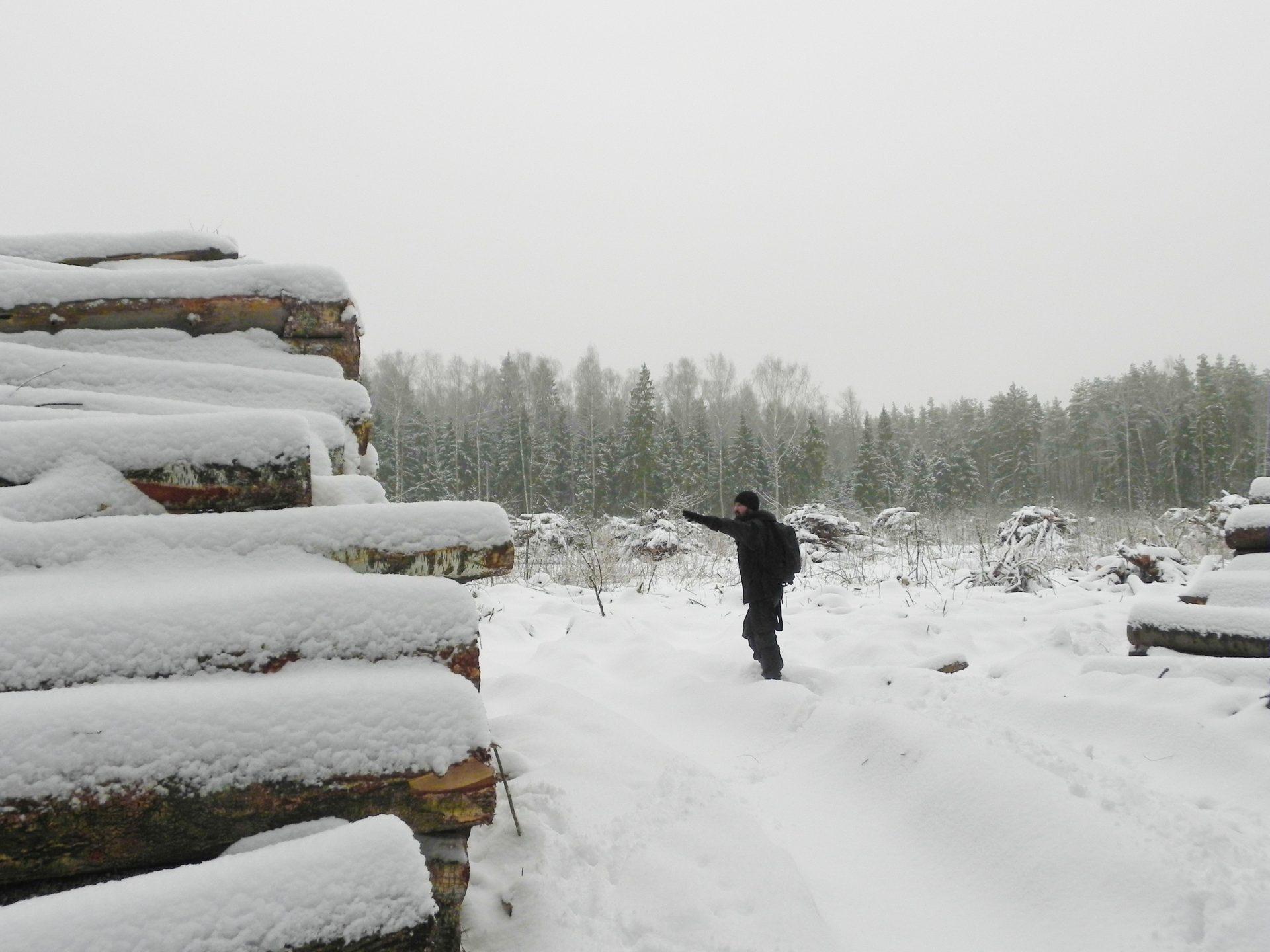 Павел Пашков: проверяем обращения о вырубках! Нам нужен следующий шаг!