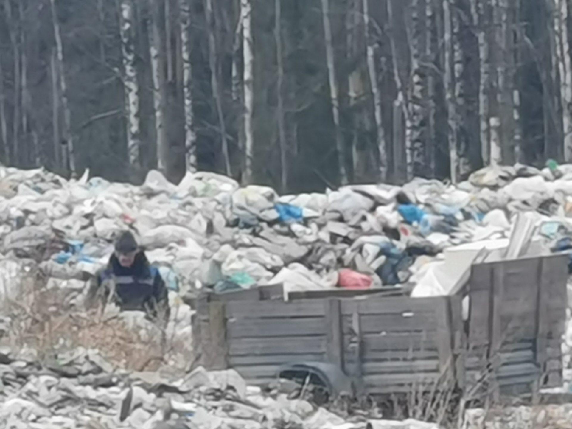 Проверил свалку в Республике Карелия!