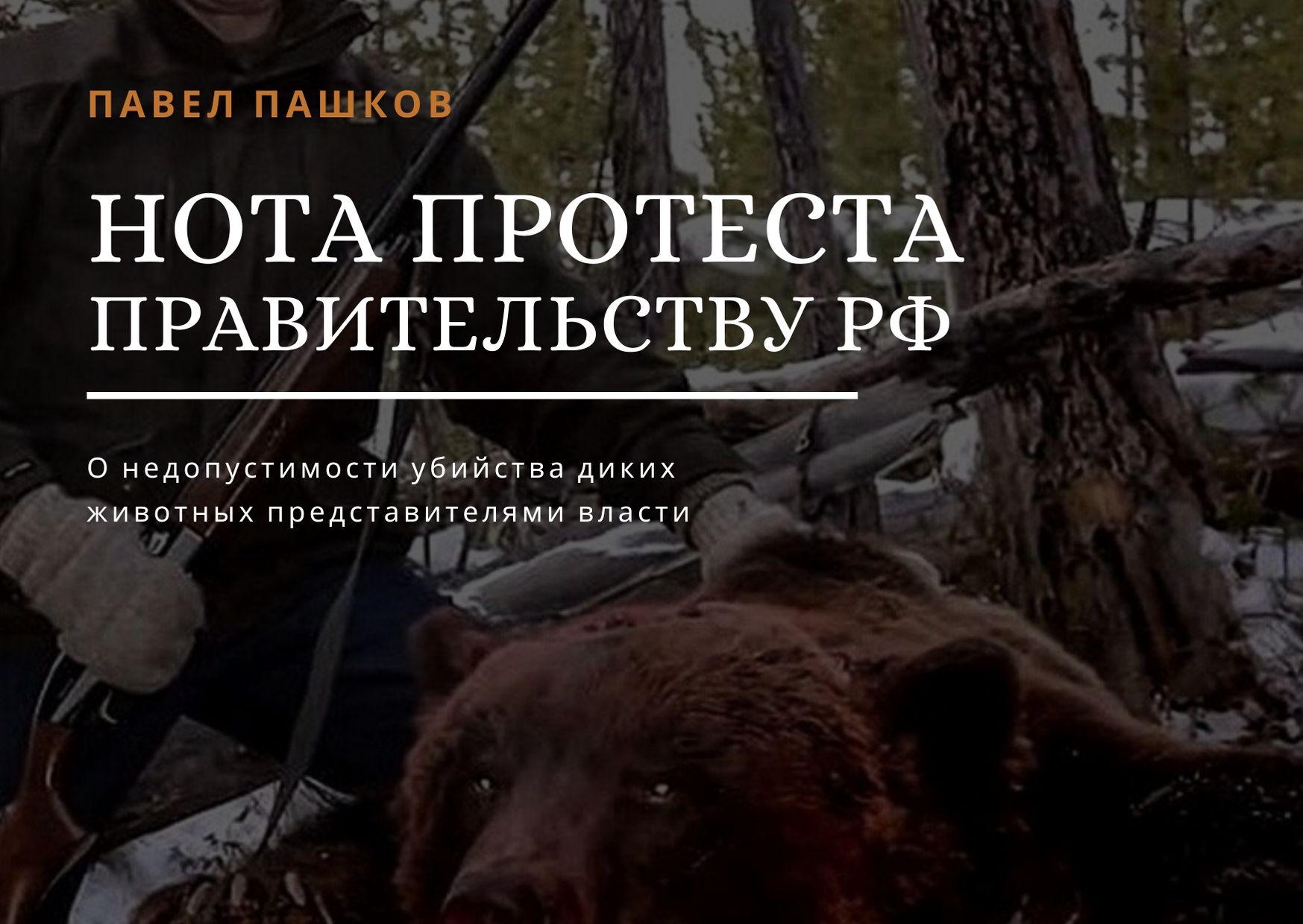 Нота протеста Правительству РФ о недопустимости убийства диких животных представителями власти!