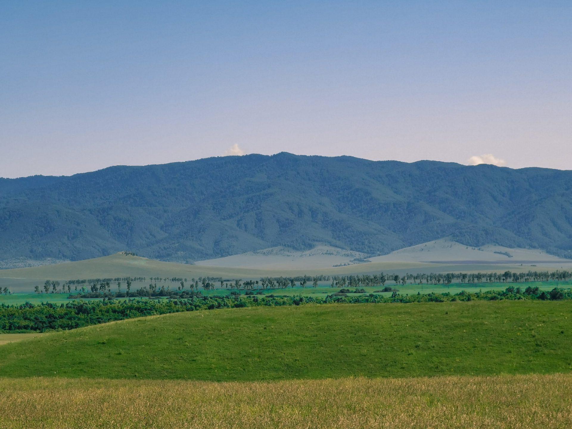 Разорвут на части горный Алтай: заметка из экспедиции