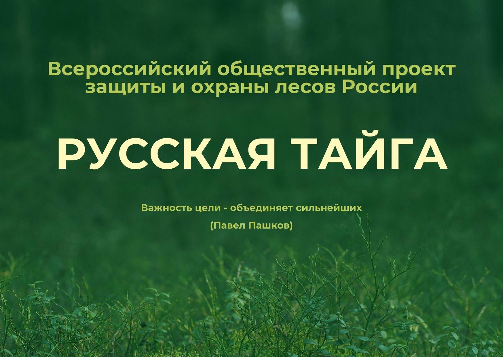 Проект «Русская Тайга»