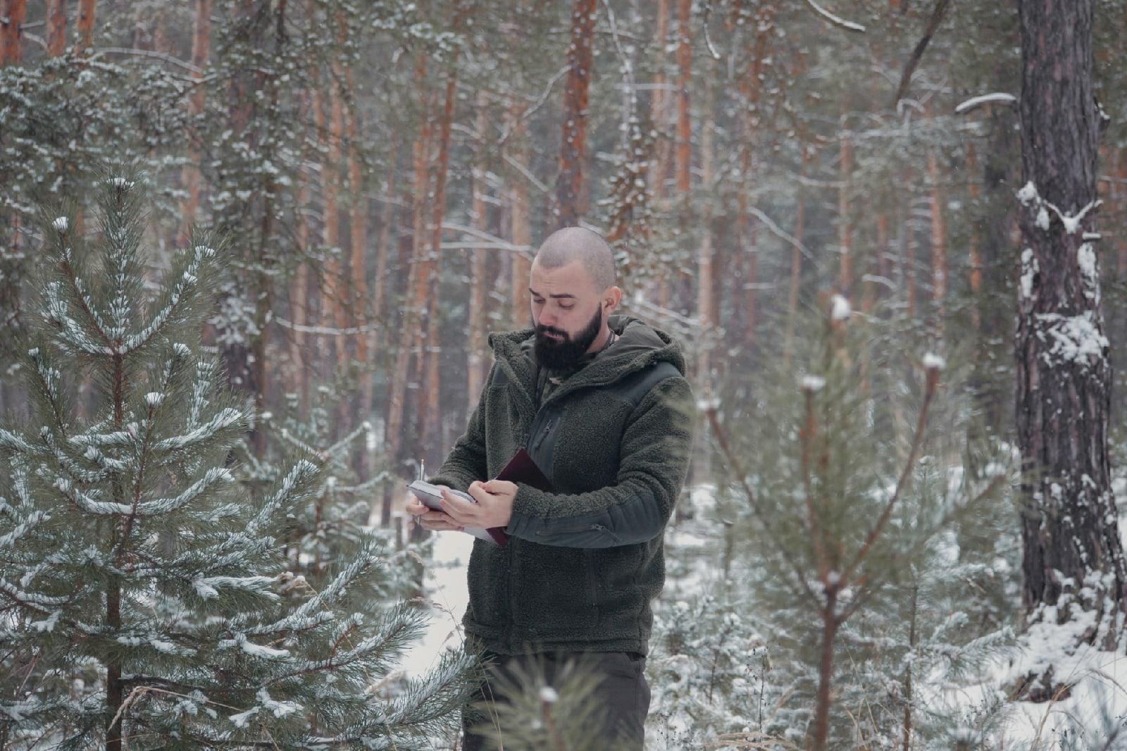 Проверяем леса: против вырубок елок в Новый год
