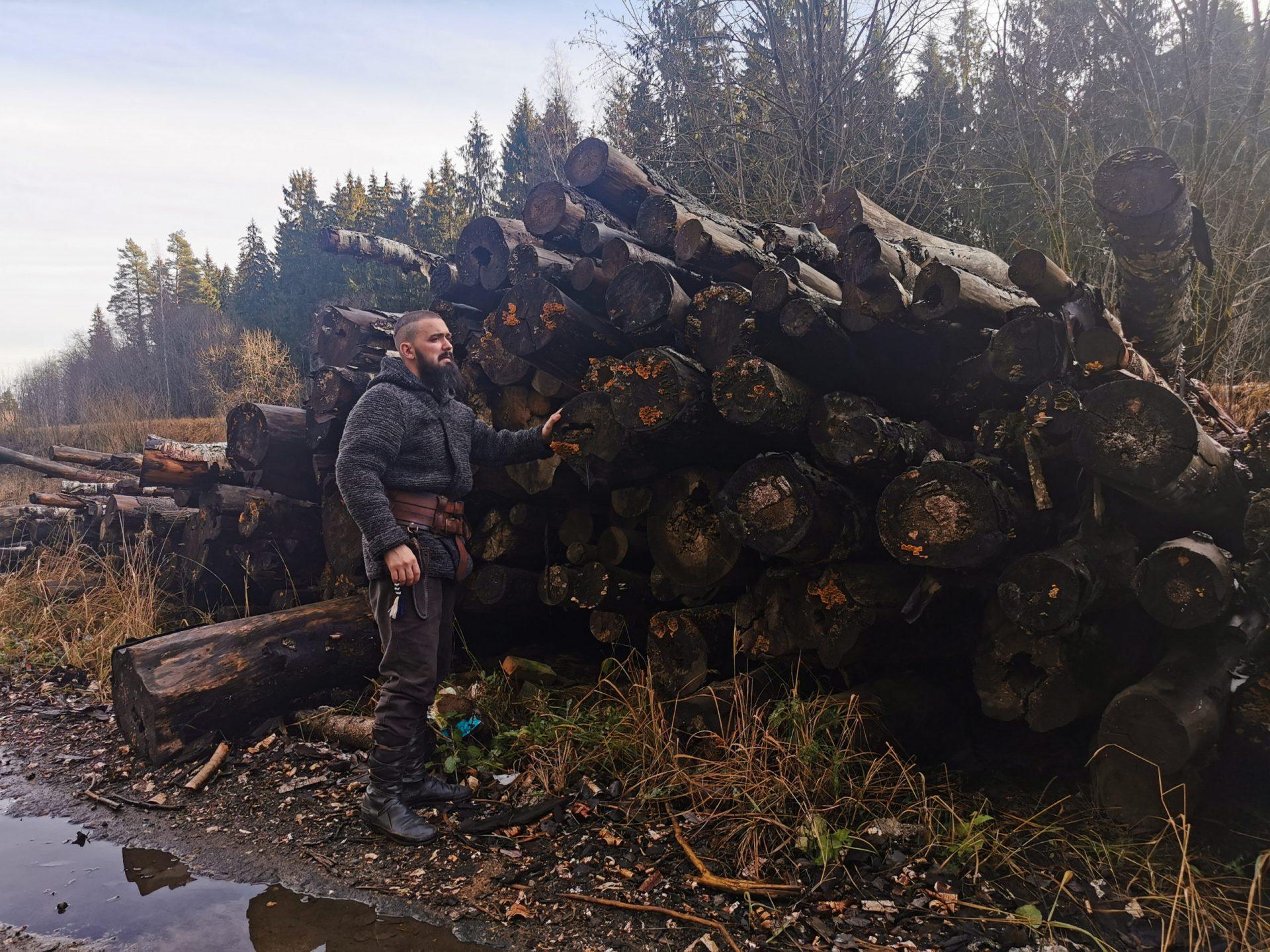 В Красноярском крае лесники воровали лес по фиктивным документам