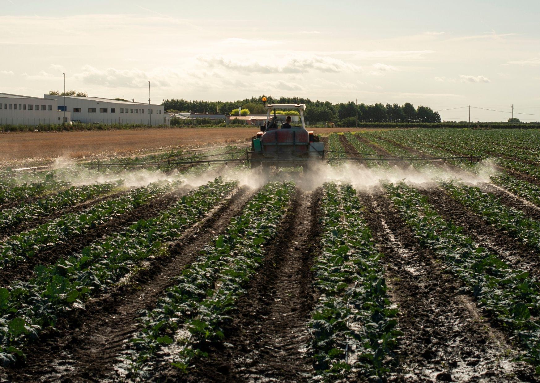 Ядовитое хозяйство: использование химии при ведении сельского хозяйства в России