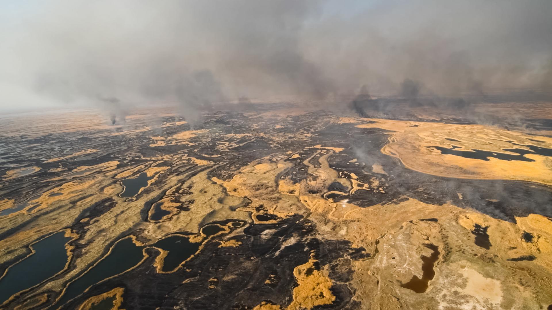 Впервые в истории зафиксирован лесной пожар за северным полярным кругом!