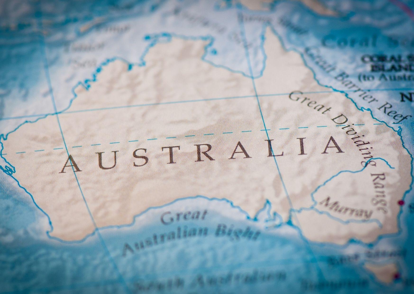 «Власти Австралии намерены истребить 2 миллиона кошек», - масштабный экоцид