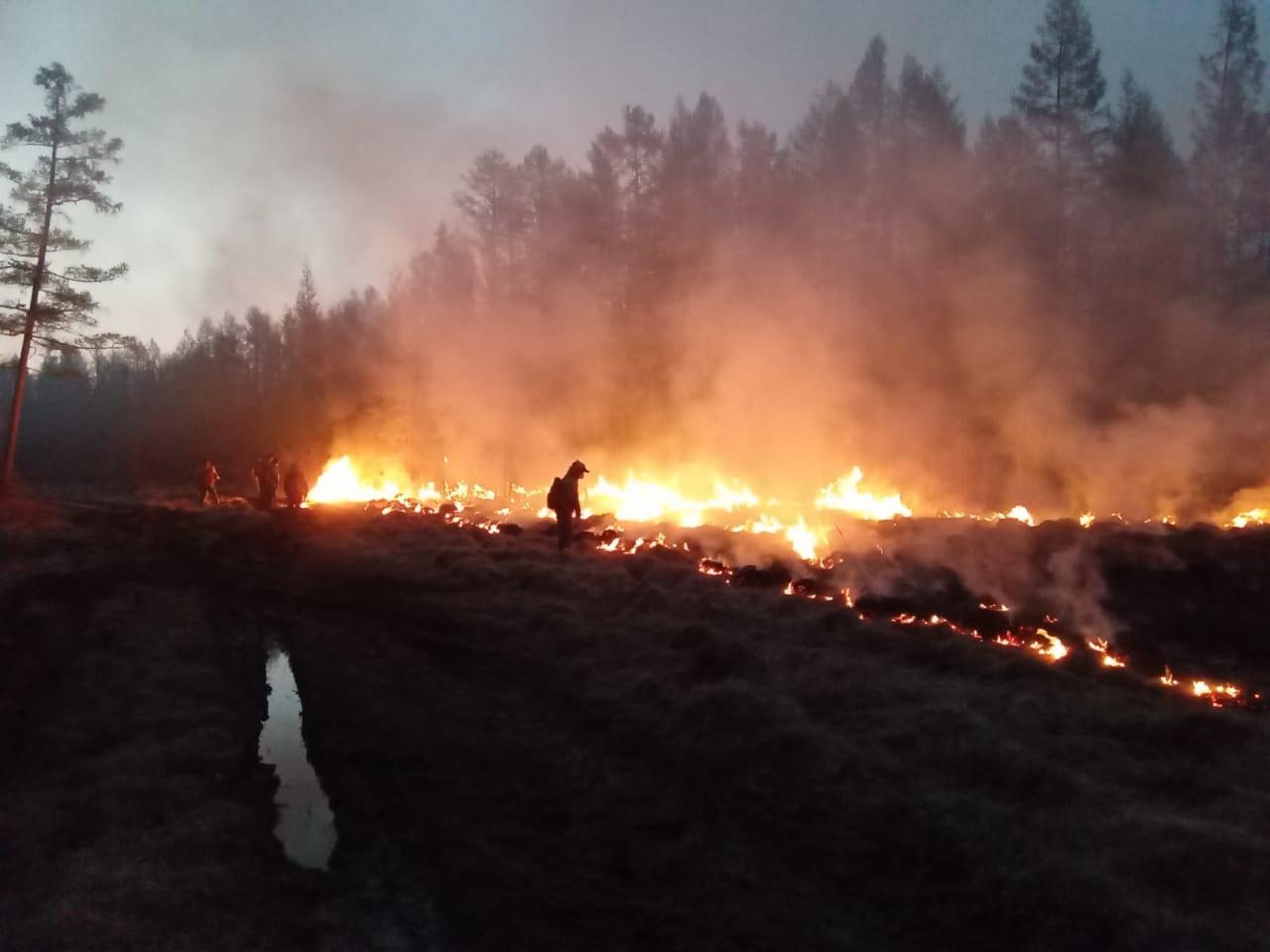 Внимание: в России наводнения и горят сотни тысяч гектар тайги!