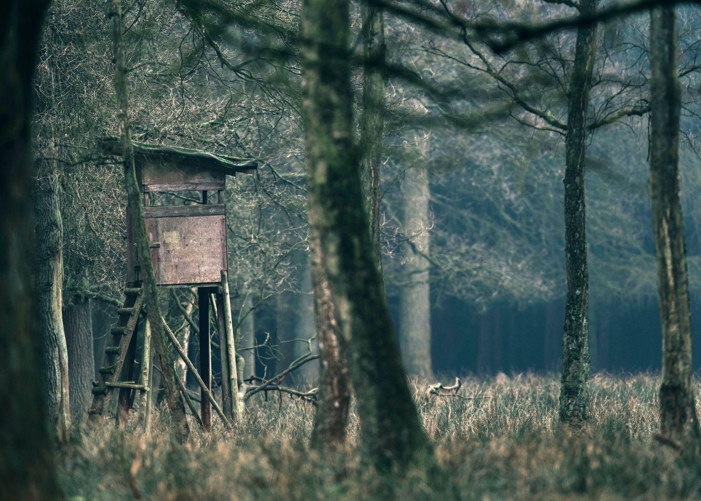 Как в Новосибирской области браконьеры охотоведа избивали...